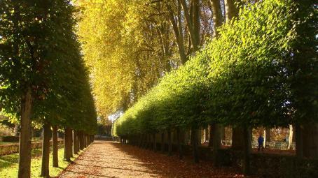Bourges-Muà Thu 2014 010