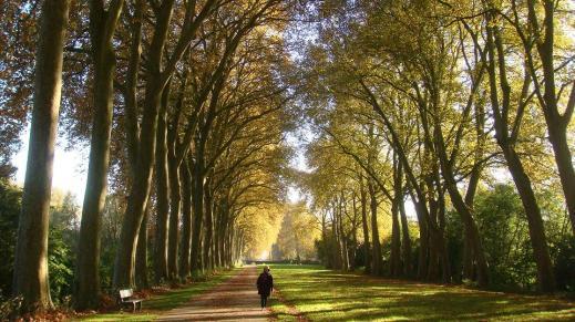 Bourges-Muà Thu 2014 082-a