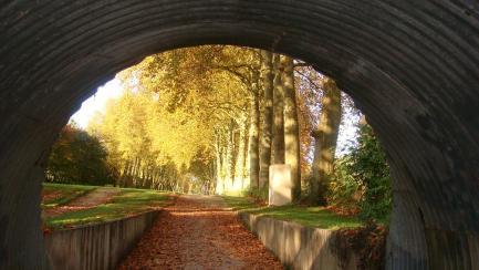 Bourges-Muà Thu 2014 107-a
