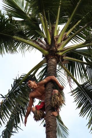 Dung - Hawaii 6b