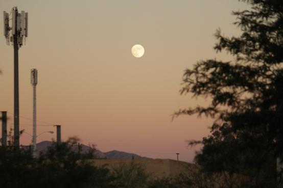 LoiMai - Moon Tucson