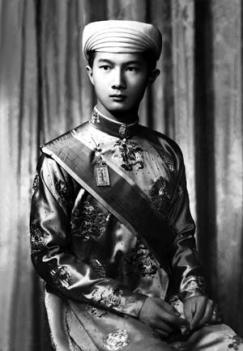 Thái tử Bảo Long
