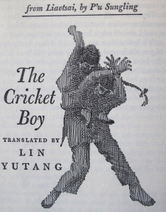 cricket boy
